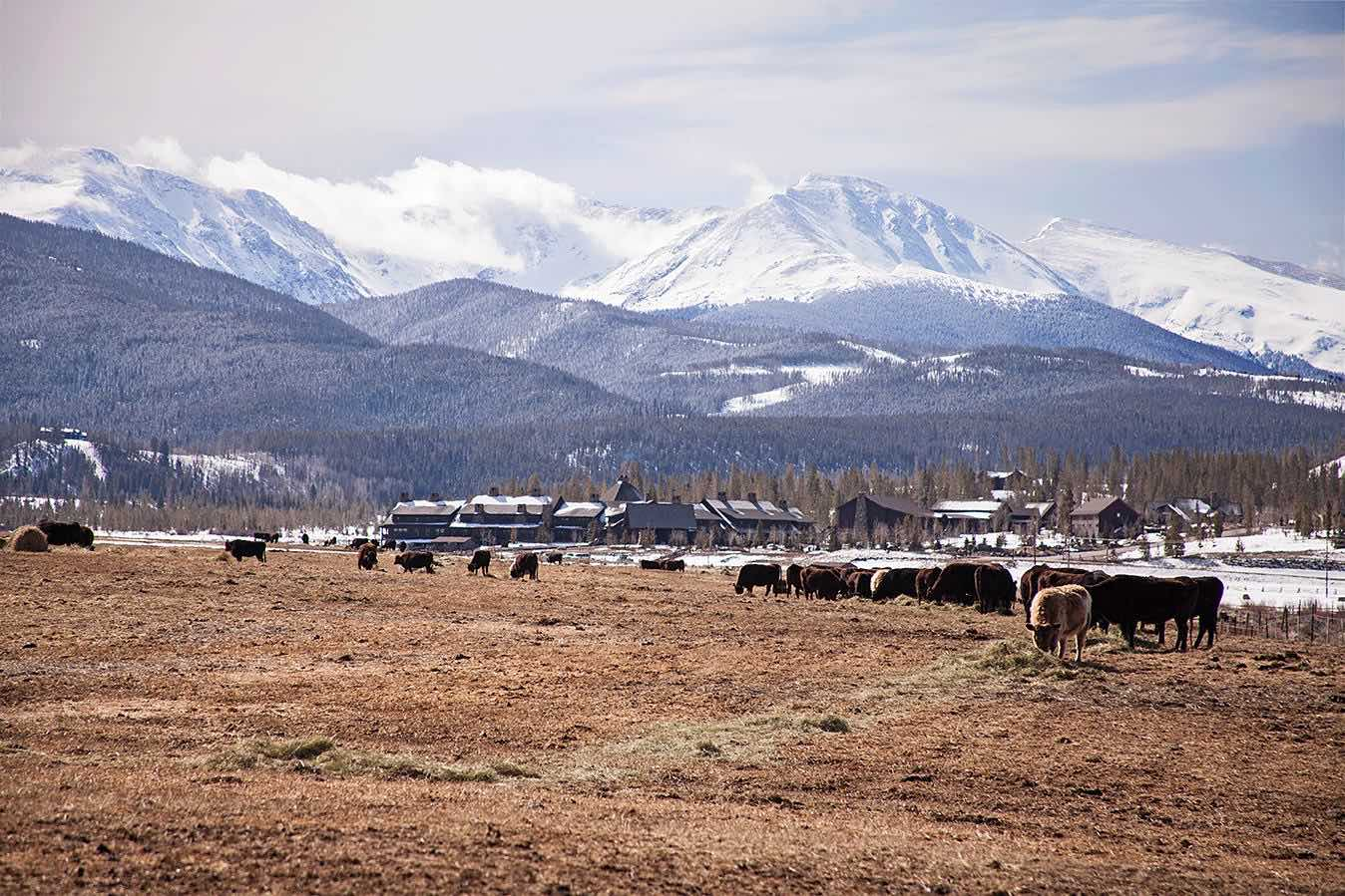 Devils Thumb Ranch in winter